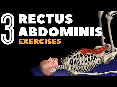 Rotator Cuff Exercises: Video Anatomy for Shoulder
